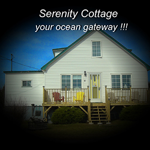 Serenity Cottages