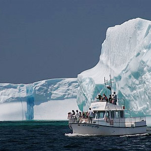 new concept c2bc1 6f916 Visit Twillingate   Tours   Iceberg Man